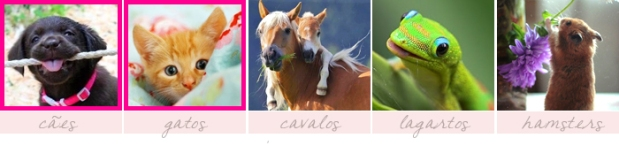 meme-25-coisas-que-prefiro-sininhu-sylvia-santini-animais-cavalo-gato-cachorro-lagarto-hamster