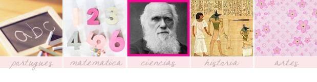 meme-25-coisas-que-prefiro-sininhu-sylvia-santini-materias-ciências-matemática-português-artes-história
