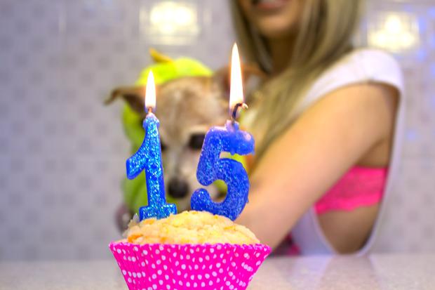 sininhu-sylvia-santini-meu-look-aniversario-15-anos-lupi-muscle-tee-lingerie-neon-01