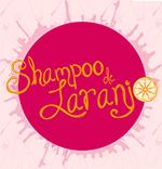 shampoo-de-laranja-blogroll