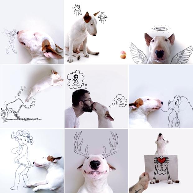 jimmy choo cachorro rafael mantesso instagram 02