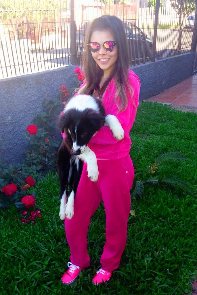 ozzy-cachorro-border-collie-meu-look-sininhu-sylvia-santini-conjunto-veludo-rosa-blog-got-sin-02